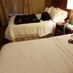 I had 2 queen beds