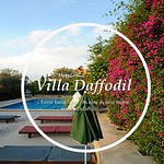 Photo of Villa Daffodil