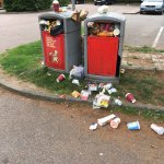 Disgraceful bins in Fourwentways services