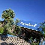 Photo of Marineland