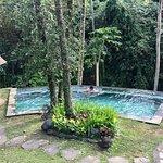 Billede af Villa Beji Indah