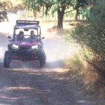 Photo de TopBuggy