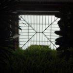 The vertical garden in the hotel