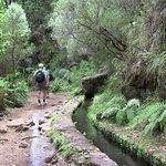 Photo of Madeira Adventure Kingdom