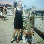 Photo of Camel Park