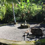 Our tranquil Reiki Garden