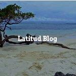 Visita nuestro Blog y gana puntos de Fidelidad