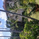 Photo of Poipu Kai Resort - Suite Paradise