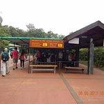 Parque Iguazu