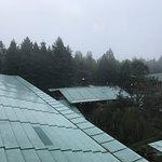 Photo of Disney's Sequoia Lodge