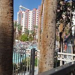 Photo de Flamingo Las Vegas Hotel & Casino