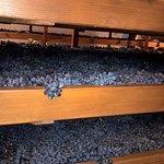 l'appassimento delle uve del valpolicella....