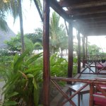Casa Del Mar Hotel Jambiani Foto