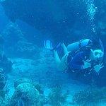 Foto de Epic Divers