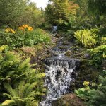 Royal Botanic Garden Edinburgh Foto