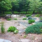 Japanese Gardens in Enger Park
