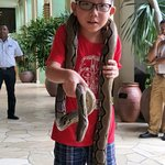 Snake Charmer show on every Saturday