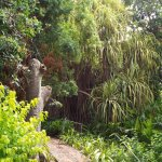 Andromena Botanical Gardens