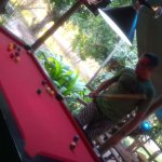 Snooker fun