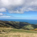 Pacific Ocean from 700 metres up at Akaroa