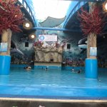 Photo of Jurassic Dream Island Aquapark