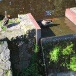 Photo of Pilsetas kanals