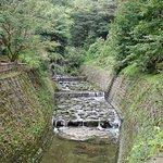 Photo de Sengan-en Garden