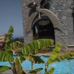 Hotel Cactus Fleur Foto
