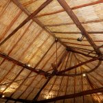 Palapa over dining room