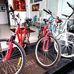 Bicicletas free