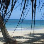Foto de Zoetry Agua Punta Cana
