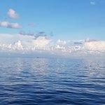 Condor Ferries Photo