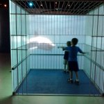 In the shark cage simulation