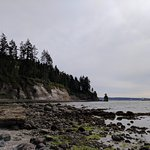 Photo of Seawall in Vancouver