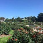 Foto de Hershey Gardens
