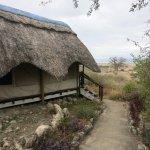 Manyara Wildlife Safari Camp-bild
