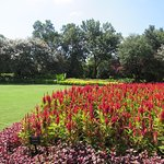 Photo of Dallas Arboretum & Botanical Gardens