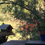 Coffe outside our Casita