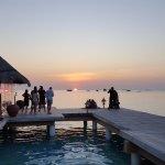 Evening Sunset with Shark Feeding