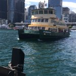 City Ferry arriving at Pyrmont Dock in Darling Harbor