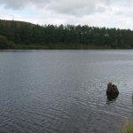 Cod Beck Reservoir