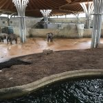 Photo de Koelner Zoo