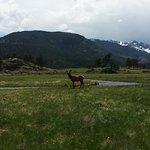 Peak to Peak Scenic Byway Foto