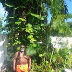 Lush vegetation all throughout the resort