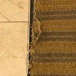 Carpet between the bedroom and bathroom