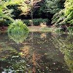 Chinese garden walk