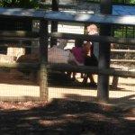 Photo de Zoo Atlanta