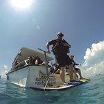 Photo de Solo Buceo Dive Shop