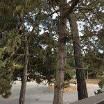 Photo de Best Western The Inn & Suites Pacific Grove