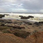 Cape Perpetua Scenic Area Foto